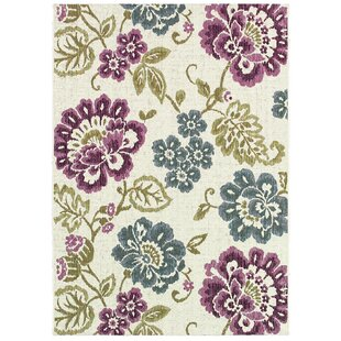 Dimmick Indoor/Outdoor Area Rug
