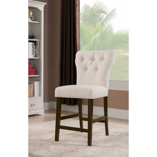 Jamil Side Chair (Set of 2) by Ophelia & Co.