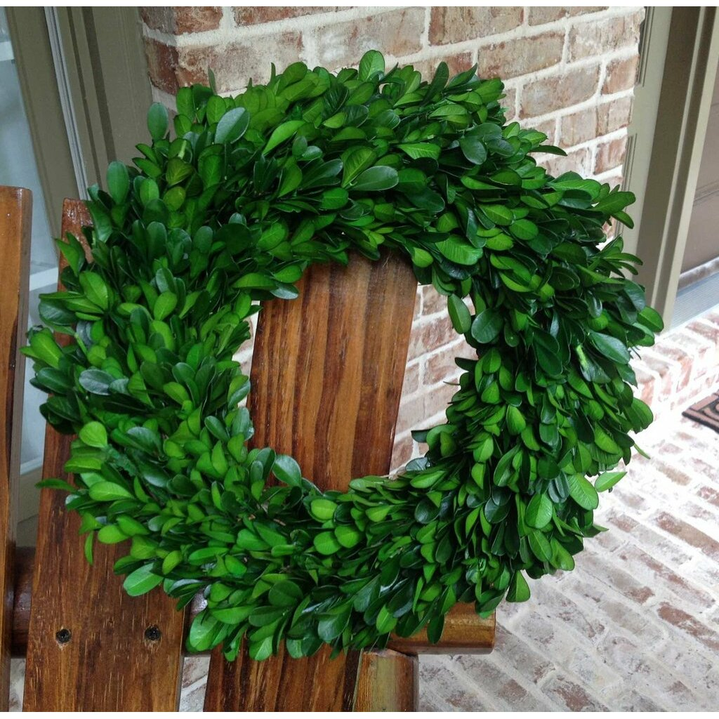 Artificial Boxwood Wreath For Sale - Preserved boxwood wreath