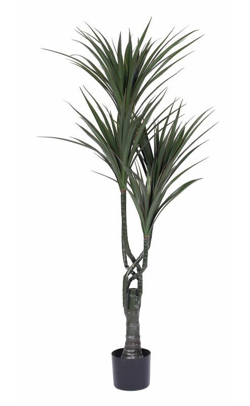 Bay Isle Home  Plastic Yucca Tree in Pot