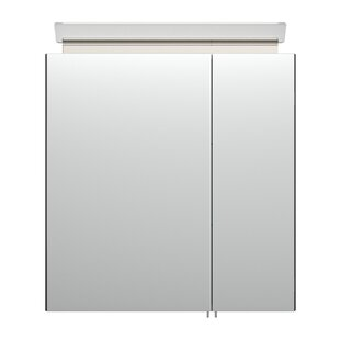 Auten 60 X 62cm Surface Mount Mirror Cabinet With Lighting By Metro Lane