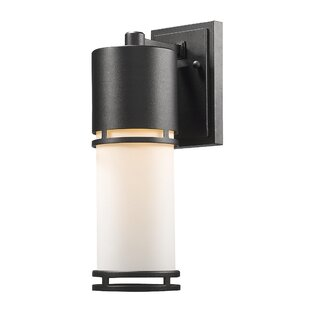 Ivy Bronx Feder 1-Light Outdoor Sconce