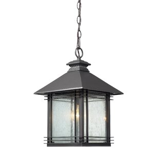 Bargain Garren 1-Light Outdoor Hanging Lantern By Breakwater Bay