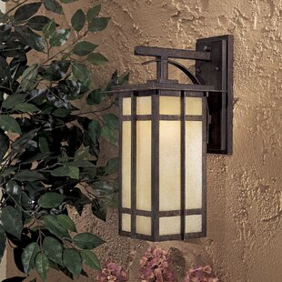 Reviews Delancy 1-Light Outdoor Wall Lantern By Great Outdoors by Minka