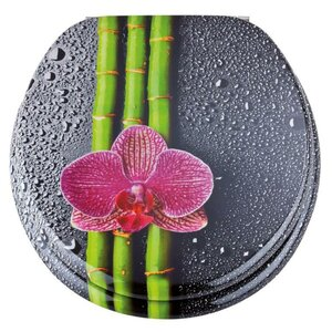 Sticker Asia für Runden WC-Sitz von Eisl