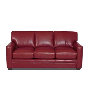 Carleton Leather Sofa Bed by Wayfair Custom Upholstery™ Cool