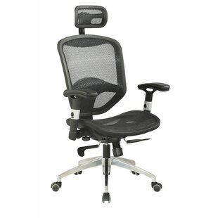 Erognmic Mesh Task Chair by Chintaly Imports