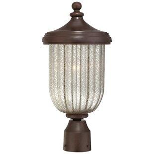 Solara Hills 1-Light Lantern Head by Great Outdoors by Minka