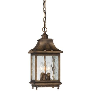 Darby Home Co Danville 3-Light Outdoor Hanging Lantern