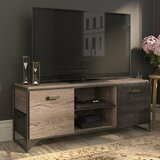 Edgerton TV Stand for TVs up to 65 by Greyleigh™