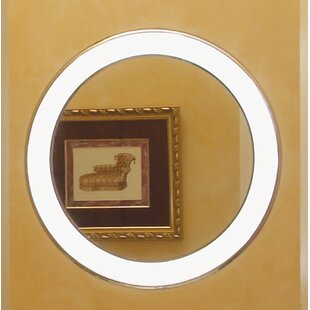 Read Reviews Tigris Bathroom/Vanity Mirror ByTech Lighting