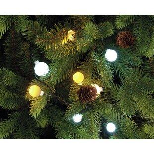 40 Berry LED Fairy Light By The Seasonal Aisle