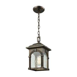 Gracie Oaks Joshana 1-Light Outdoor Hanging Lantern