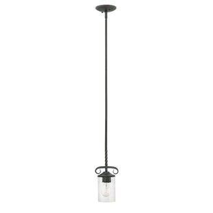 Fleur De Lis Living Carlyle 1-Light Cylinder Pendant