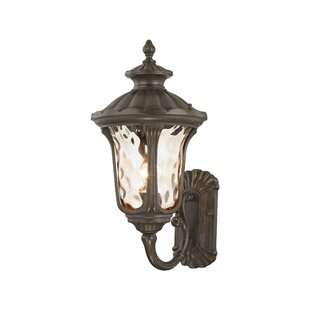 Gurnee Iced Cased Glass 1-Light Outdoor Sconce by Three Posts