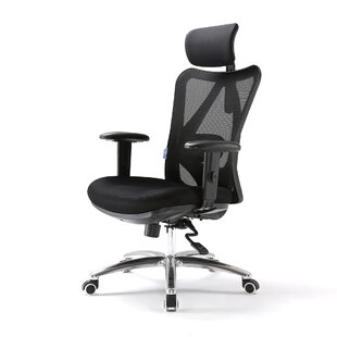 Mirabelle Mesh Task Chair