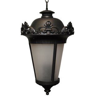 Petrey 4-Light Outdoor Hanging Lantern