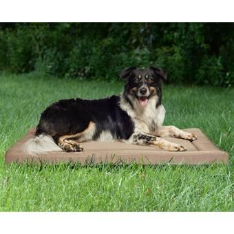 Tucker Murphy Pet Shadle Memory Foam Pet Mat Wayfair