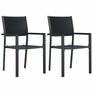 Faizan Garden Chair (Set Of 2) By Sol 72 Outdoor