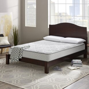 Wayfair Sleep™ Wayfair Sleep 10