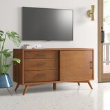 Williams TV Stand for TVs up to 55 inches by AllModern