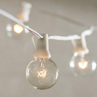 Brayden Studio Mayes 24-Light String Lighting