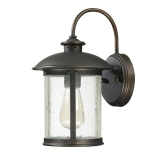 Gracie Oaks Calvin 1-Light 100W Outdoor Wall Lantern