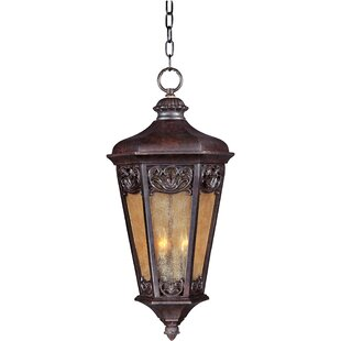 Read Reviews Wimbish 3-Light Outdoor Hanging Lantern By Fleur De Lis Living
