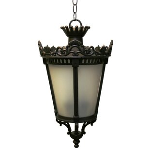 Alcott Hill Phillipstown 4-Light Outdoor Hanging Lantern