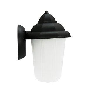 Efficient Lighting 1-Light Outdoor Sconce