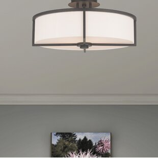 Brayden Studio Rainer 4-Light Semi-Flush Mount