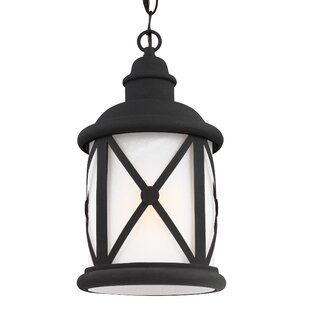 Darby Home Co Burwood 1-Light Outdoor Hanging Lantern