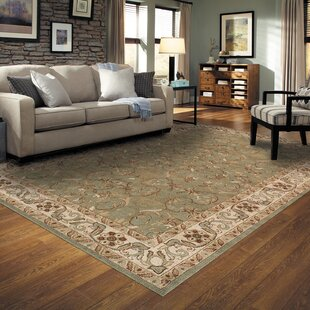 Destin Green Area Rug