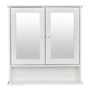 Hobucken Surface Mount Framed 2 Doors Medicine Cabinet