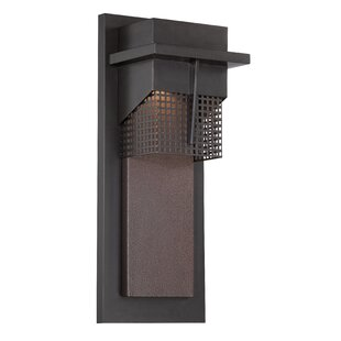 Colella 1-Light Outdoor Flush Mount by Williston Forge