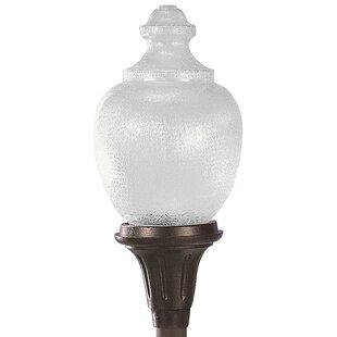Reese Commercial Acorn 1-Light Lantern Head by Alcott Hill
