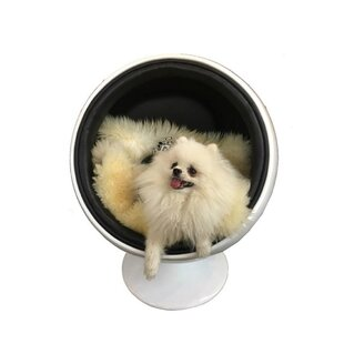 Bradfield Dog Swivel Balloon Chair