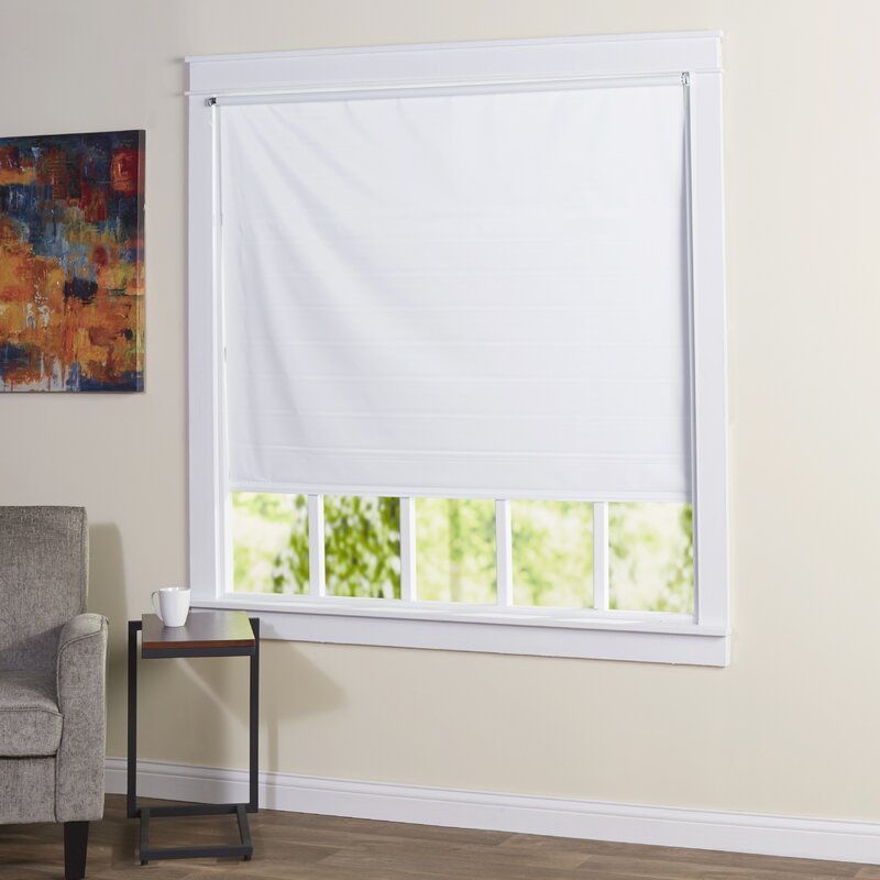Cords Free Tear Down Window Blackout Roller Shade