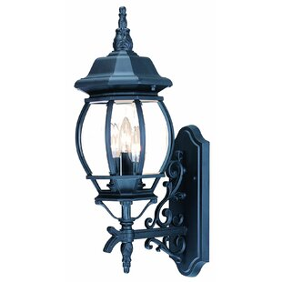Look for Reva 3-Light Outdoor Sconce By Fleur De Lis Living