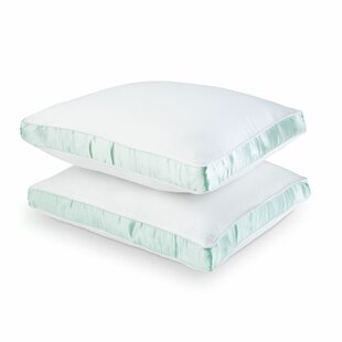 Medium Polyester/Polyfill Pillow (Set of 2)