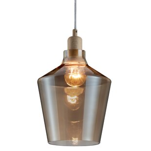 Wrought Studio Abe 1-Light Novelty Pendant