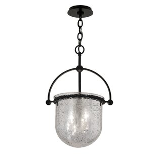 Gracie Oaks Pinnock 3-Light Urn Pendant