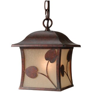 Reviews Madison 1-Light Outdoor Pendant By Hardware House
