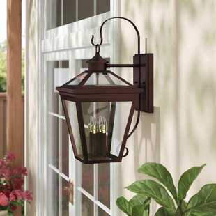 Darby Home Co Coleg 4-Light Outdoor Wall Lantern