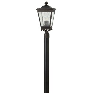 Charlton Home Pullins Outdoor 3-Light Lantern Head