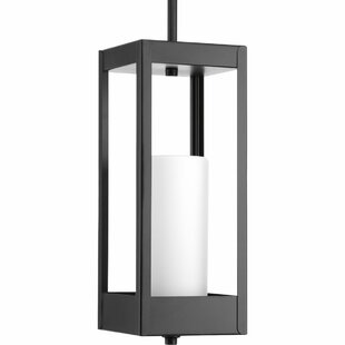 Order Knox 1-Light Outdoor Hanging Lantern By Latitude Run