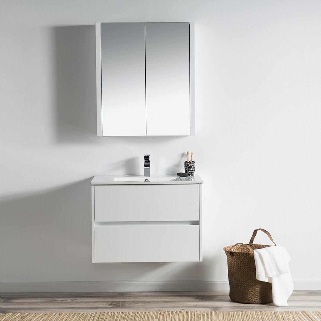 Orren Ellis Oquendo 30 Wall Mounted Single Bathroom Vanity Set With Mirror Reviews Wayfair Ca
