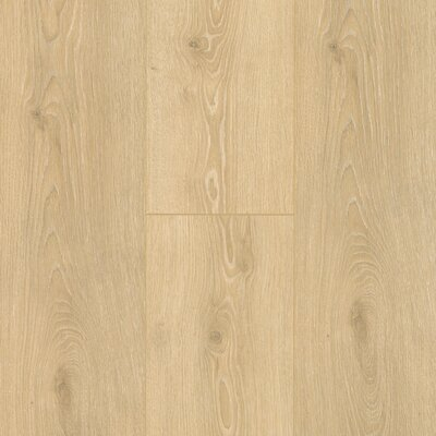 "8"" x 47"" x 12mm Oak Laminate Flooring Mohawk Flooring Color: Sand Dune"