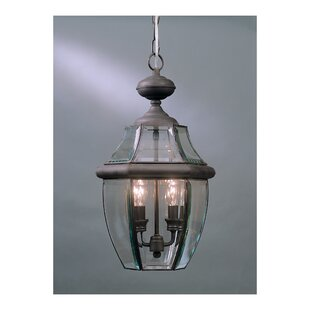 Washington Mews 2-Light Traditional Outdoor Hanging Lantern