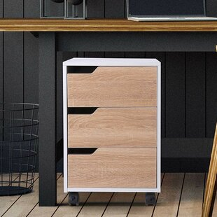 Cassity 3 Drawer Filling Cabinet By 17 Stories